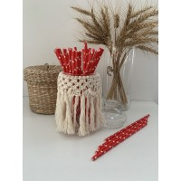 Pailles red à étoiles whitehes - Lot de 25